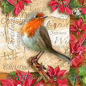 Christmas - Napkins paintings