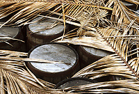 France/DOM/Martinique/Le François/Domaine de l'Acajou/Distillerie Clément: Vieux fûts de Bourbon en attente d'être remplis de Rhum AOC de la Martinique