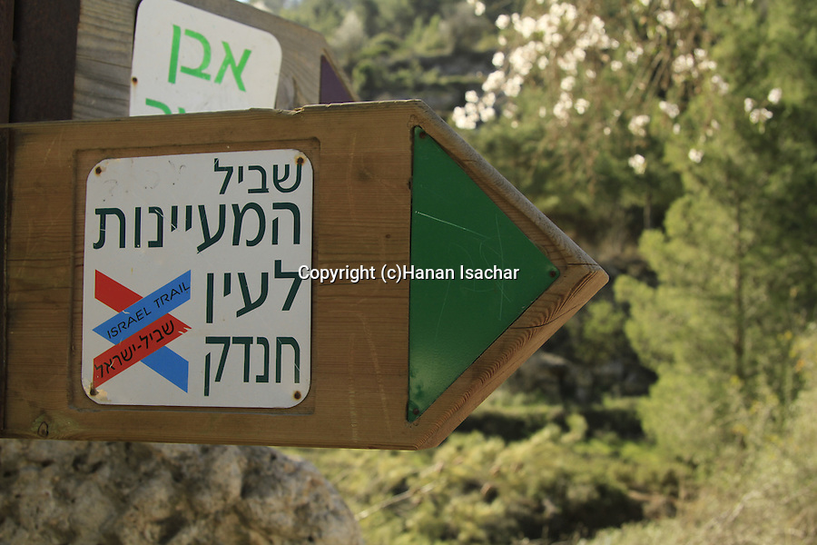 Israel, Jerusalem mountains, the trail to Ein Handak