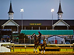 LOUISVILLE, KY - APRIL 29: A horses comes off the track framed by the historic Twin Spires at Churchill Downs on April 29, 2018 in Louisville, Kentucky. (Photo by Scott Serio/Eclipse Sportswire/Getty Images)
