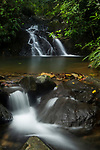 Creek flowing through tropical rainforest, Cocobolo Nature Reserve, Mamoni Valley, Panama