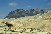Bedouin tents in the desert between Tafila and Kerak, Jordan.