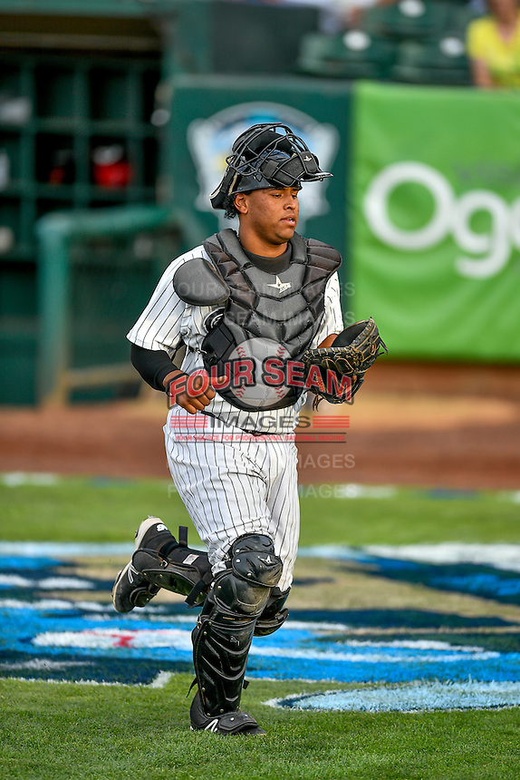 Pioneer League All-Star Meibrys Viloria (4) of the Idaho Falls Chukars during the game against the Northwest League All-Stars at the 2nd Annual Northwest League-Pioneer League All-Star Game at Lindquist Field on August 2, 2016 in Ogden, Utah. The Northwest League defeated the Pioneer League 11-5. (Stephen Smith/Four Seam Images)