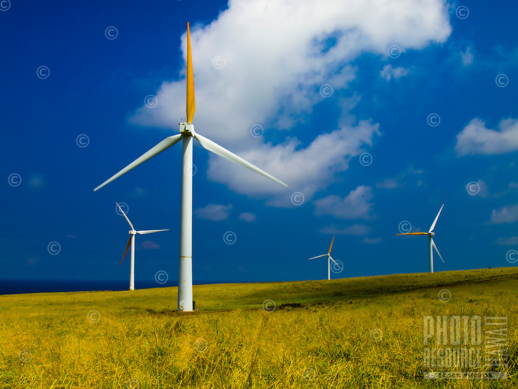 Windmills at rest in an open field in Hawi on the Big Island.