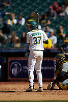 Chase Wehsener (37) of the Baylor Bears at bat against the Missouri Tigers in game one of the 2020 Shriners Hospitals for Children College Classic at Minute Maid Park on February 28, 2020 in Houston, Texas. The Bears defeated the Tigers 4-2. (Brian Westerholt/Four Seam Images)