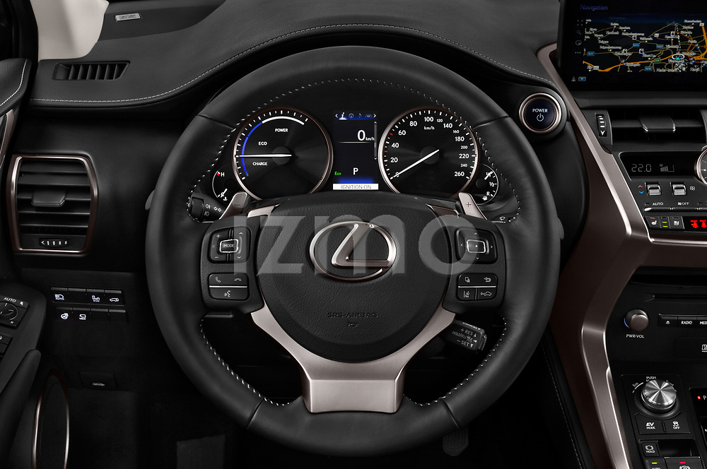 Car pictures of steering wheel view of a 2018 Lexus NX Executive Line 5 Door SUV