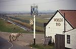 Horses grazing on Common land Tilbury Essex Thames Estuary Worlds End Pub.1990s 1991 UK