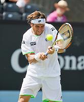 18-06-13, Netherlands, Rosmalen,  Autotron, Tennis, Topshelf Open 2013, ,David Ferrer<br /> Photo: Henk Koster