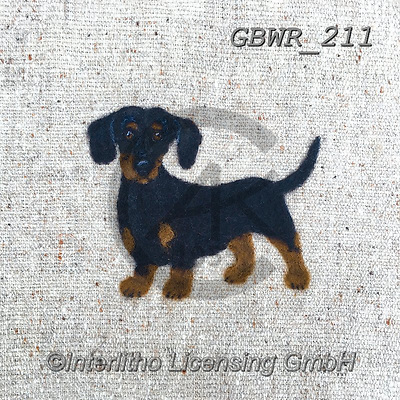 Simon, REALISTIC ANIMALS, REALISTISCHE TIERE, ANIMALES REALISTICOS, innovative, paintings+++++SharonS_Dachshund,GBWR211,#a#, EVERYDAY dogs,breeds of dog,