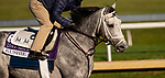 November 2, 2020: Rushie, trained by trainer Michael W. McCarthy, exercises in preparation for the Breeders' Cup Dirt Mile at Keeneland Racetrack in Lexington, Kentucky on November 2, 2020. Carolyn Simancik/Eclipse Sportswire/Breeders Cup