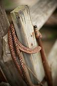Fer à cheval, station d'élevage en Nouvelle-Calédonie