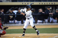 Christian Long (19) of the Wake Forest Demon Deacons at bat against the Sacred Heart Pioneers at David F. Couch Ballpark on February 15, 2019 in  Winston-Salem, North Carolina.  The Demon Deacons defeated the Pioneers 14-1. (Brian Westerholt/Four Seam Images)