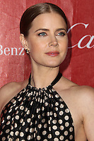 PALM SPRINGS, CA - JANUARY 04: Actress Amy Adams wearing a Juan Carlos Obando halter dress along with asadei pumps and Cartier jewelry arrives at the 25th Annual Palm Springs International Film Festival Awards Gala held at Palm Springs Convention Center on January 4, 2014 in Palm Springs, California. (Photo by Xavier Collin/Celebrity Monitor)