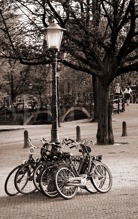 bicycles chained to light post, Amsterdam, Netherlands, Europe