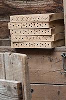 Wildbienen-Nisthilfe aus Dielenbrettern, Brett, Bretter, Brettern, die Eichendielen, Eichenbretter, Hartholz, Eichenbretter-Stapel, wurden mit unterschiedlich dicken Bohrungen versehen, Wildbienen-Nisthilfen, Wildbienen-Nisthilfe selbermachen, selber machen, Wildbienenhotel, Insektenhotel, Wildbienen-Hotel, Insekten-Hotel