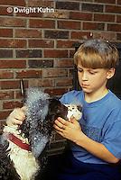 BH01-008z  Bubbles - boy washing dog