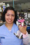 Bay Animal Hospital | Corporate Head shots with Pets | Office Shots and Pet Surgery | Manhattan Beach California | Beach Portraits | Pet Portraits | Corporate Headshots | Employee Corporate Headshots | Website Facebook Portraits | 2009 | <br /> Photo by Joelle Leder Photography Studio ©