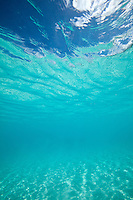 Clear Caribbean water<br /> Hawksnest Bay<br /> Virgin Islands National Park<br /> U.S. Virgin Islands