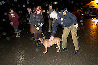 "In a dark and rainy parking lot at City Hall in Forks, under the watchful gaze of three police officers, a half-dozen supporters of AARF, and a representative from OAS who handed off the dog, Leroy was reunited with Enajibi at Forks City Hall on December 20, 2013.<br /> <br /> Clallum County Undersheriff Ron Peregrin who leaned over to give Leroy a pet,  had said earlier ""Its difficult, because when you have laws to follow, its not like we don't have feelings too.""<br /> <br /> Owner Steve Markwell Markwell has been under fire for neglecting the dogs after volunteers filed a complaint in 2012. The City of Forks police department investigated and found horrific conditions but said legally they were unable to do anything about it. Markwell claims he has 125 dogs inside and believes he is their last hope.  Many of the dogs were turned over to him by rescues and shelters who deemed them dangerous. Mounting evidence of animal cruelty has prompted many of them to ask for their dogs back.  Markwell refuses and only lets a few trusted volunteers enter the premises."