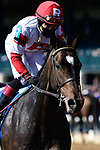 April 02, 2021: Chasing Artie #3 ridden by Joel Rosario charges late to win the Palisades Turf Sprint on Keeneland Opening Day at Keeneland Race Course in Lexington, Kentucky on April 02, 2021. Jessica Morgan/Eclipse Sportswire/CSM