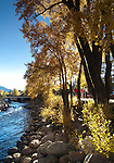 Autumn afternoon, Estes Park, Colorado, USA