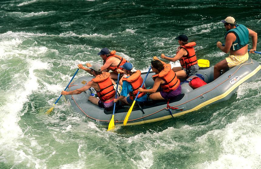 Whitewater rafting action, Salmon River, Idaho