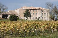 Europe/France/Midi-Pyrénées/81/Tarn/ Cahuzac-sur-Vère: Maison et Vignoble  à Montels