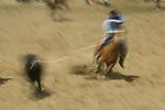A cowboy ropes a steer during team roping at the Jordan Valley Big Loop Rodeo, Ore..