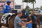 March 29, 2014: Anjaz ridden by Rajiv Maragh wins the Orchid(G3T) on Florida Derby Day at Gulfstream Park in Hallandale Beach (FL). Arron Haggart/ESW/CSM
