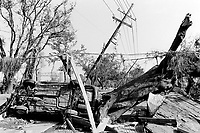 USA. Louisiana. New Orleans. Orleans Parish. 9th Ward area. The 9th Ward used to be the living place of the black (afro-american) community . Aftermath of hurricane Katrina. Cars, electric poles, trees and houses have been destroyed when the canal levee (500 meters to the left) was breached. The area was heavily flooded. It is now empty and all its inhabitants have left the town. The people could no longer and ever live again in the houses because of the destructions due to the floods and the water. The entire area needs to be bulldozed before any new construction can be built. Pollution and contaminated land. Household waste. Destruction of the urban american way of life. © 2005 Didier Ruef