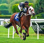 July 10, 2021: Scocciatore #3, ridden by jockey Eric Cancel wins an allowance race on the turf at Belmont Park in Elmont, New York on July 10, 2021. Dan Heary/Eclipse Sportswire/CSM