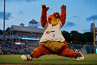 Frisco RoughRiders mascot Deuce during a Texas League game against the Springfield Cardinals on May 7, 2019 at Dr Pepper Ballpark in Frisco, Texas.  (Mike Augustin/Four Seam Images)