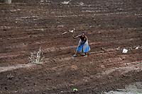 ZAMBIA, Sinazongwe, Tonga tribe, farming with hoe/ Kleinbauern bestellen ihre Felder mit der Hacke