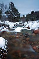 The Allt Mor, Glenmore National Nature Reserve, Cairngorm National Park, Badenoch & Speyside