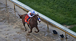 LOUISVILLE, KY - MAY 05: Justify #7, ridden by jockey Mike Smith, wins the 144th running of the Kentucky Derby during the 144th Kentucky Derby at Churchill Downs on May 5, 2018 in Louisville, Kentucky. (Photo by John Vorhees/Eclipse Sportswire/Getty Images)