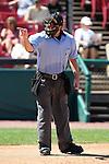 MiLB Umpires 2010