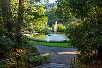 Fountain pond, Marin Art and Garden Center
