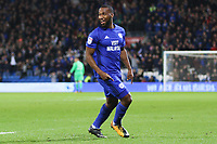 Junior Hoilett of Cardiff City celebrates scoring his sides first goal of the match during the Sky Bet Championship match between Cardiff City and Ipswich Town at The Cardiff City Stadium, Cardiff, Wales, UK. Tuesday 31 October 2017