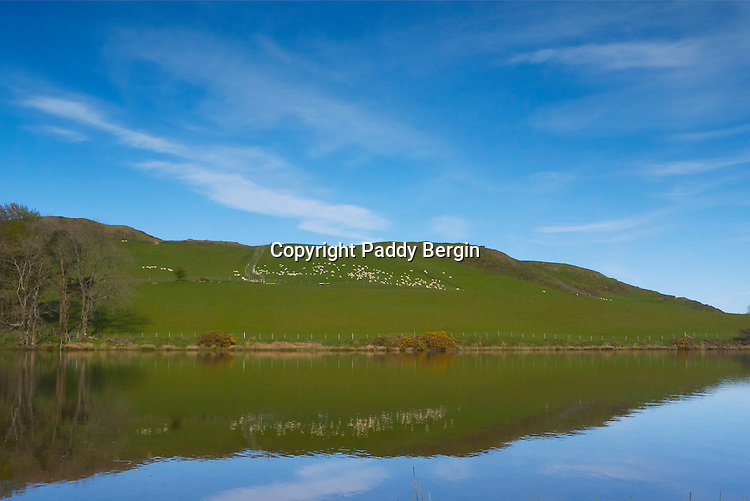 A hillside next to Frongoch. This photo was taken at Llyn Frongoch in close proximity to the village of Trisant, close to the Aberystwyth to Devil's Bridge road. Frongoch is a fly only lake and is regularly stocked with both brown and rainbow trout. <br /> <br /> The hillside is reflected in the lake water.<br /> <br /> Stock Photo by Paddy Bergin