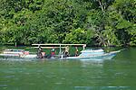 Locals draggin a fish net in the lagoon, Loloda Selatan islands, Spice Islands, Maluku Region, Halmahera, Indonesia, Pacific Ocean