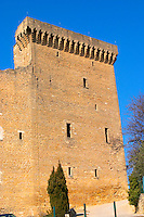 The ruins of the Pope's summer castle in Chateauneuf-du-Pape, Vaucluse, Rhone, Provence, France