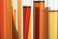 The various hues of honey shine in test tubes. The color will indicate its origin: colza, acacia, sunflower, thyme, linden, pine, buckwheat, heath, chestnut and strawberry tree.