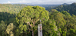 Canopy walkway overlooking lowland rainforest just after sunrise. Temburong National Park, Brunei, Borneo.