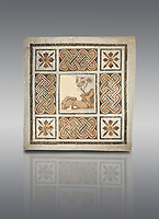 Pictures of a geometric Roman mosaics with strap work and cruciform flowers and in the centre a damaged depiction of a running deer, from the ancient Roman city of Thysdrus, Jilani Guirat area. 3rd century AD. El Djem Archaeological Museum, El Djem, Tunisia.