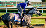 April 27, 2021: Travel Column, trained by trainer Brad Cox, exercises in preparation for the Kentucky Oaks at Churchill Downs on April 27, 2021 in Louisville, Kentucky. Scott Serio/Eclipse Sportswire/CSM