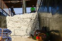 BURKINA FASO , Bobo Dioulasso, Société Burkinabè des Fibres Textiles SOFITEX cotton ginning company unit Bobo I, processing of conventional and gene manipulated Monsanto BT cotton / SOFITEX, Fabrik fuer Baumwollentkernung Werk Bobo I, Verarbeitung von konventioneller und genmanipulierter Monsanto Baumwolle, Anlieferung der Baumwolle