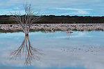 Salt Lake on Kangaroo Island South Australia The Lake Changes its Looks Each Day Wonderful Place Always Different