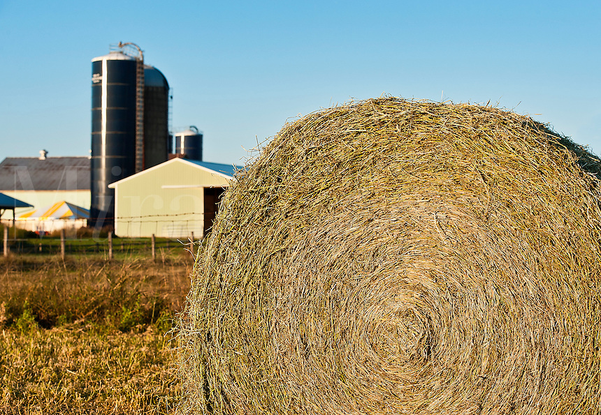 Round hay bale on farm field.