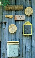 Insekten-Hotel, Insektenhotel, hohle Schilfstängel, Baumscheiben mit Bohrlöchern, Steine mit Bohrlöchern sowie ein Lehmangebot bieten Nistmöglichkeiten, Nisthilfen, Nisthilfe für Wildbienen, Mauerbienen und solitäre Wespen