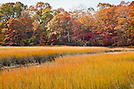 Autumn color on Touisset Marsh in Warren, RI, USA